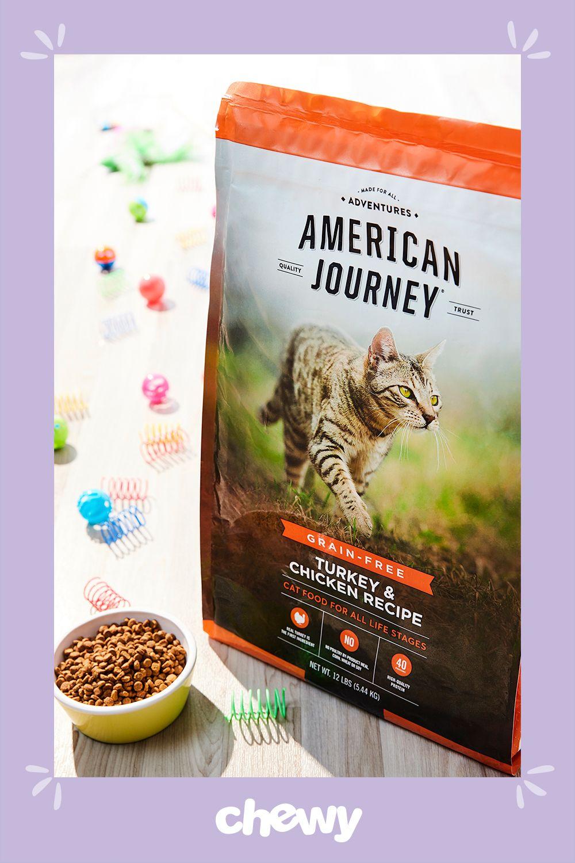 American Journey Turkey Chicken Recipe Grain Free Dry Cat Food 12 Lb Bag Chewy Com Dry Cat Food Free Cat Food Grain Free