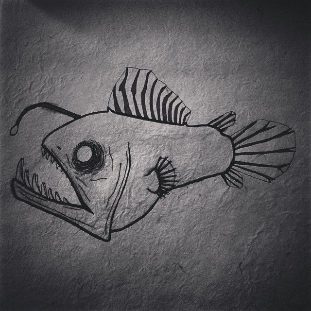how to draw a realistic angler fish