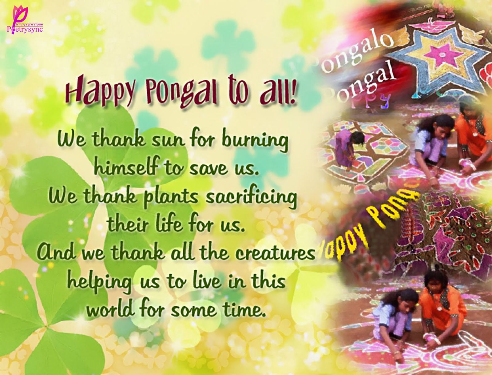 Happy pongal wishes image with message pongal wishes pinterest happy pongal wishes image with message kristyandbryce Images
