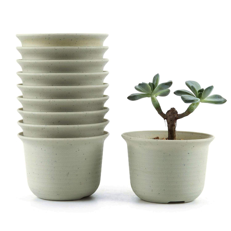 T4u 9cm Plastic Round Succulent Plant Pot Cactus Plant Pot Flower Pot Container Planter Beige Packag With Images Planting Succulents Cactus Plant Pots Plastic Nursery Pots