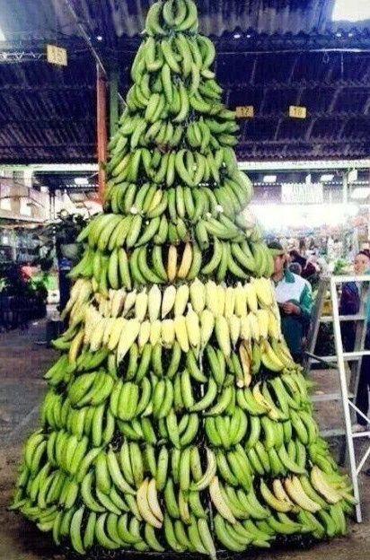 #banana xmas tree