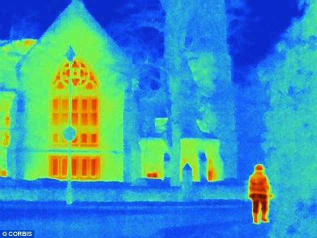 infrared vision lizards - Google Search