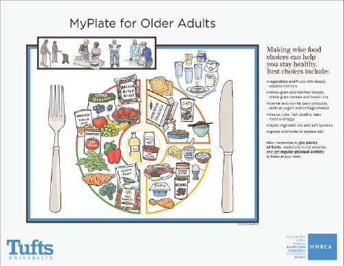 MyPlate for Older Adults Older adults