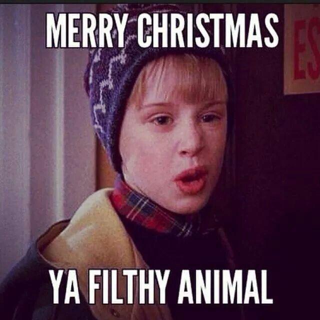 Merry Christmas Ya Filthy Animal Meme.Merry Christmas Ya Filthy Animal Yule Funny Happy