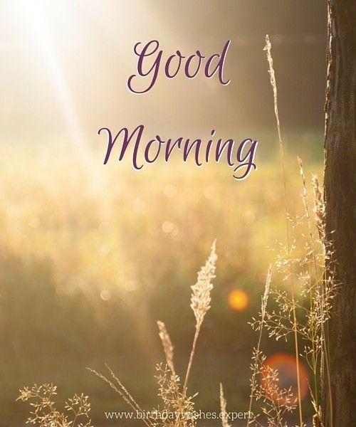 Fresh Start Good Morning Pictures Good Morning Nature Latest Good Morning Images Morning Pictures