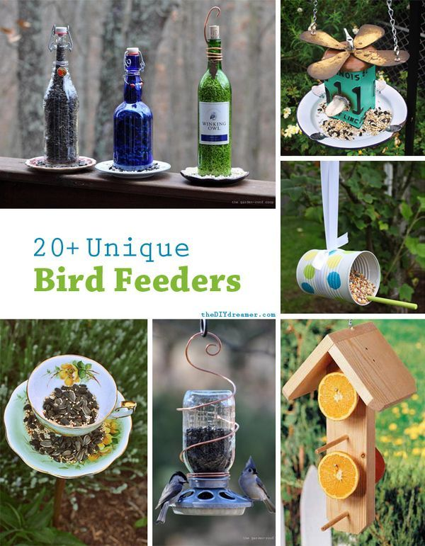20+ Unique Bird Feeders! A fabulous collection of unique bird feeders. A great way to keep the birds around your home very happy.