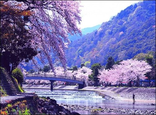 Free Spring Background Pictures Of Spring Japanese Spring Nature Spring Wallpapers Spring Scenery Beautiful Nature Wallpaper Nature Images Best spring landscape hd wallpapers