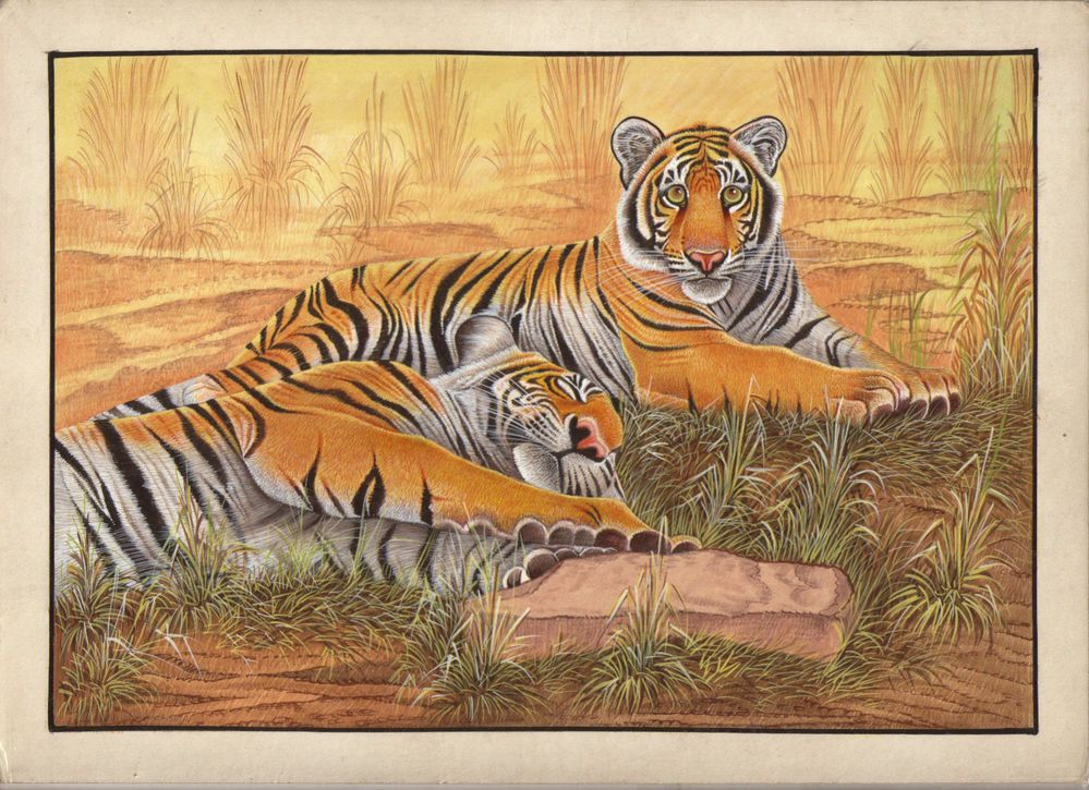 Bengal Tiger Handmade Painting Picture Image Wildlife Animal Watercolor Artwork #Miniature