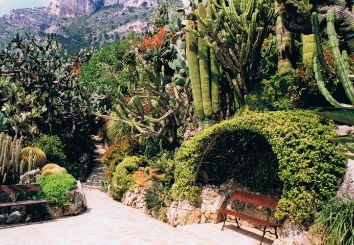 Jardin Exotique De Monaco With Images Beautiful Places To