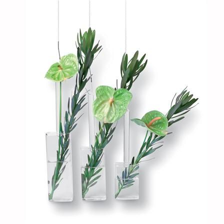 Tung Design Set Of 3 Hanging Single Stem Vases 7 X 34 X 4 Cm My