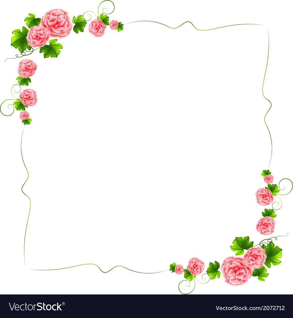 A Border With Carnation Pink Flowers Royalty Free Vector Pink Flowers Carnations Pink Carnations