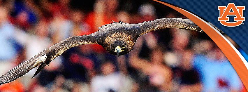 Auburn tigers facebook cover photos war eagle auburn