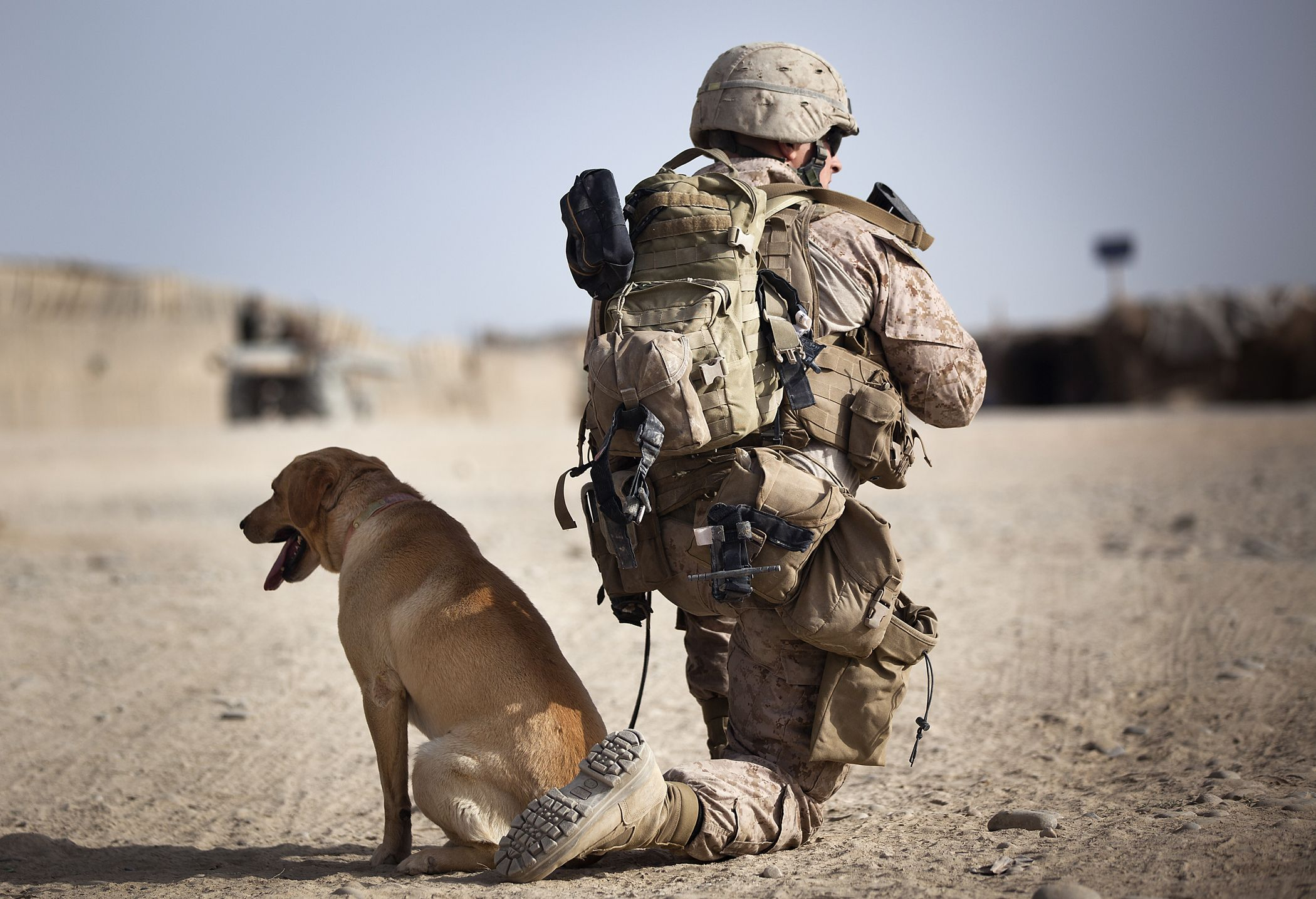U.S. Marine Lance Cpl. Ken Bissonette, a dog handler with 4th ...