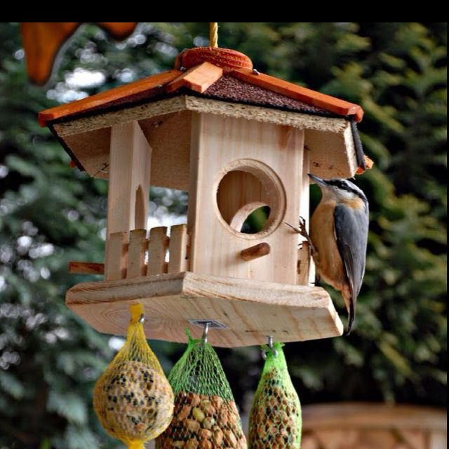 Bird feeder Gazebo