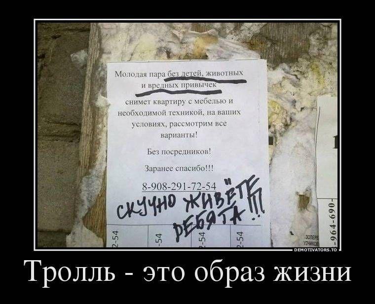 Прикольные и смешные картинки про жизнь с надписями (37 ...