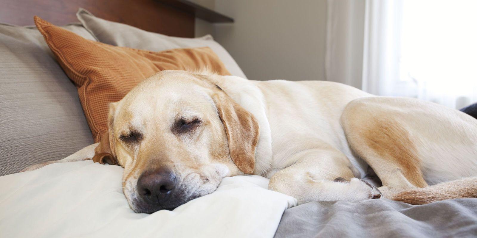 5 simple tricks to help you sleep in the heat