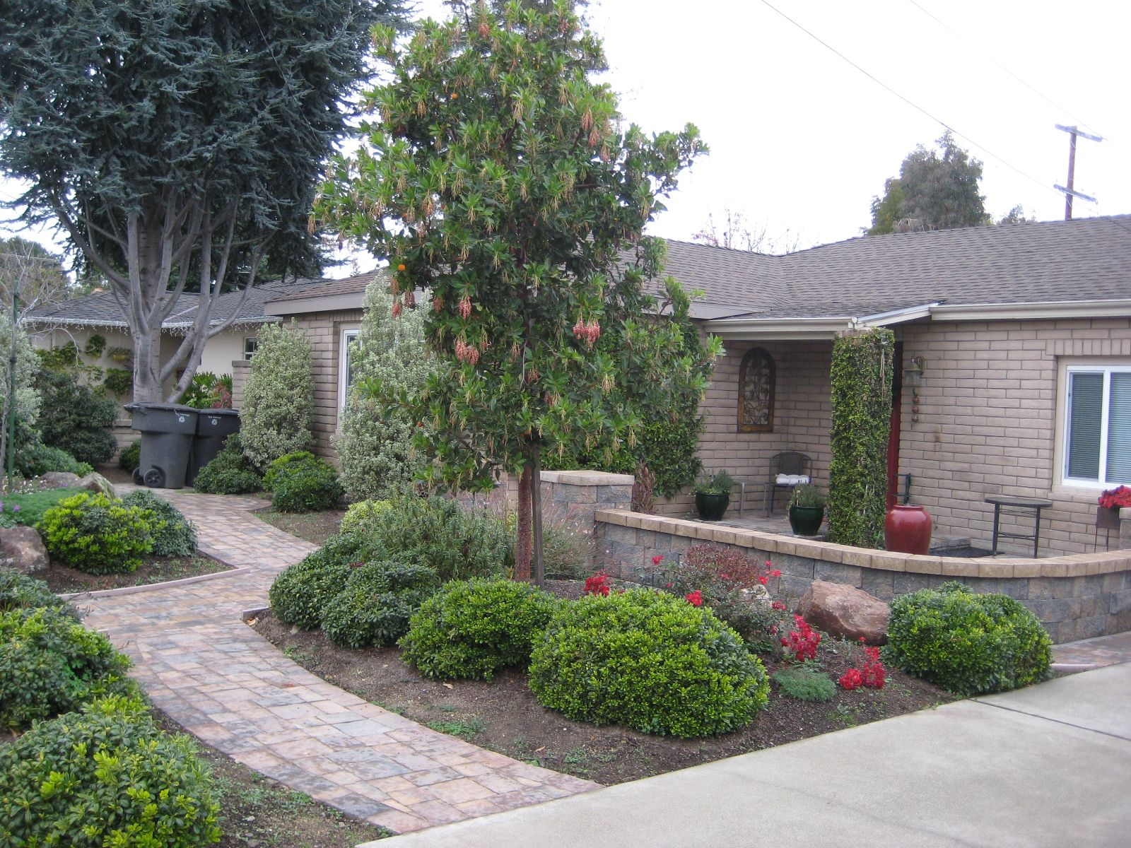 Lawn Less By Design Courtyard Landscaping Front 640 x 480