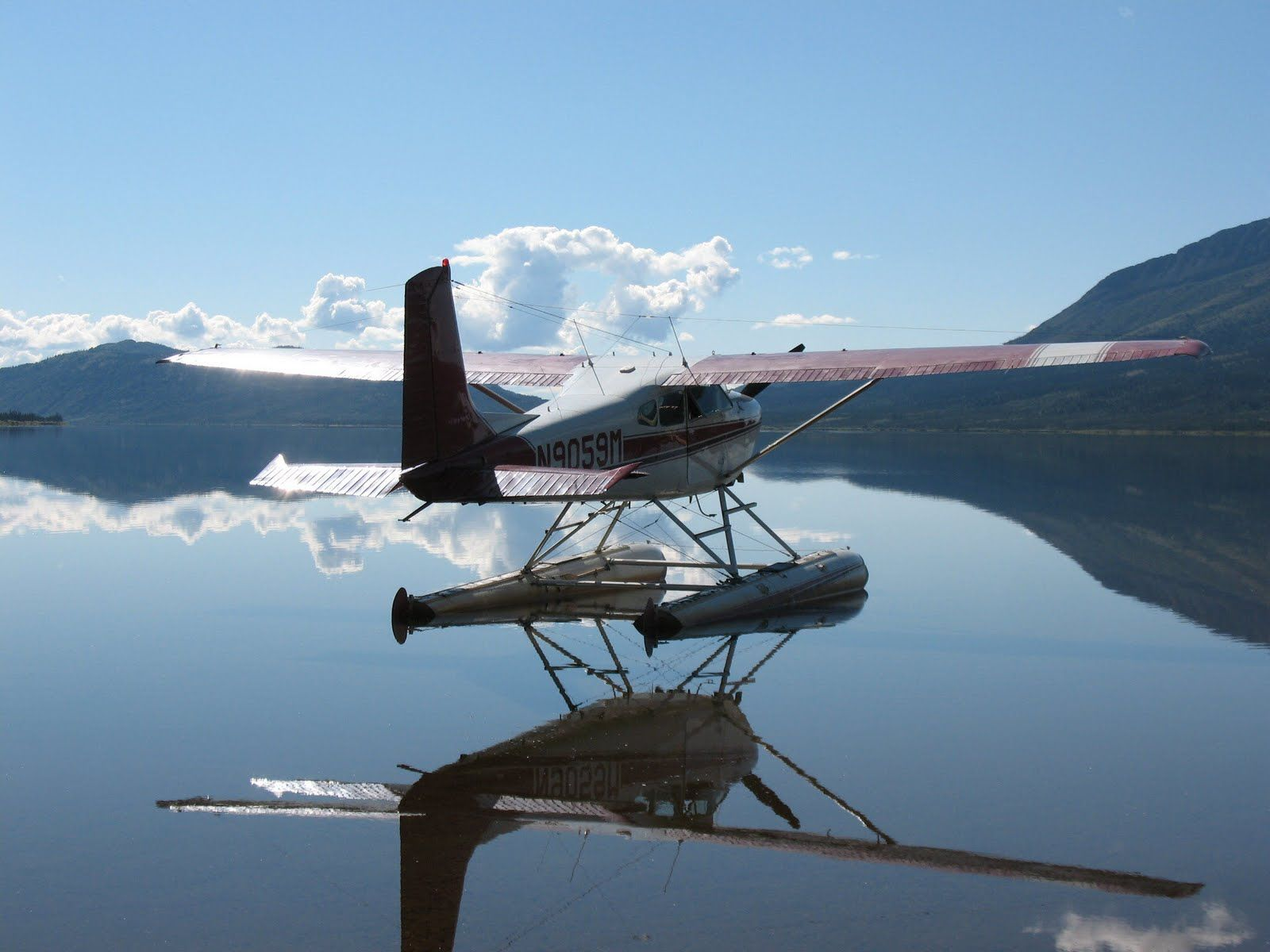 RUMBEAR CHRONICLES Luftfahrt, Fliegen, Flugzeug
