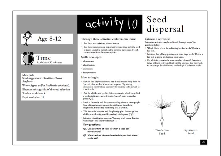 seed dispersal activity free printable seeds seed. Black Bedroom Furniture Sets. Home Design Ideas