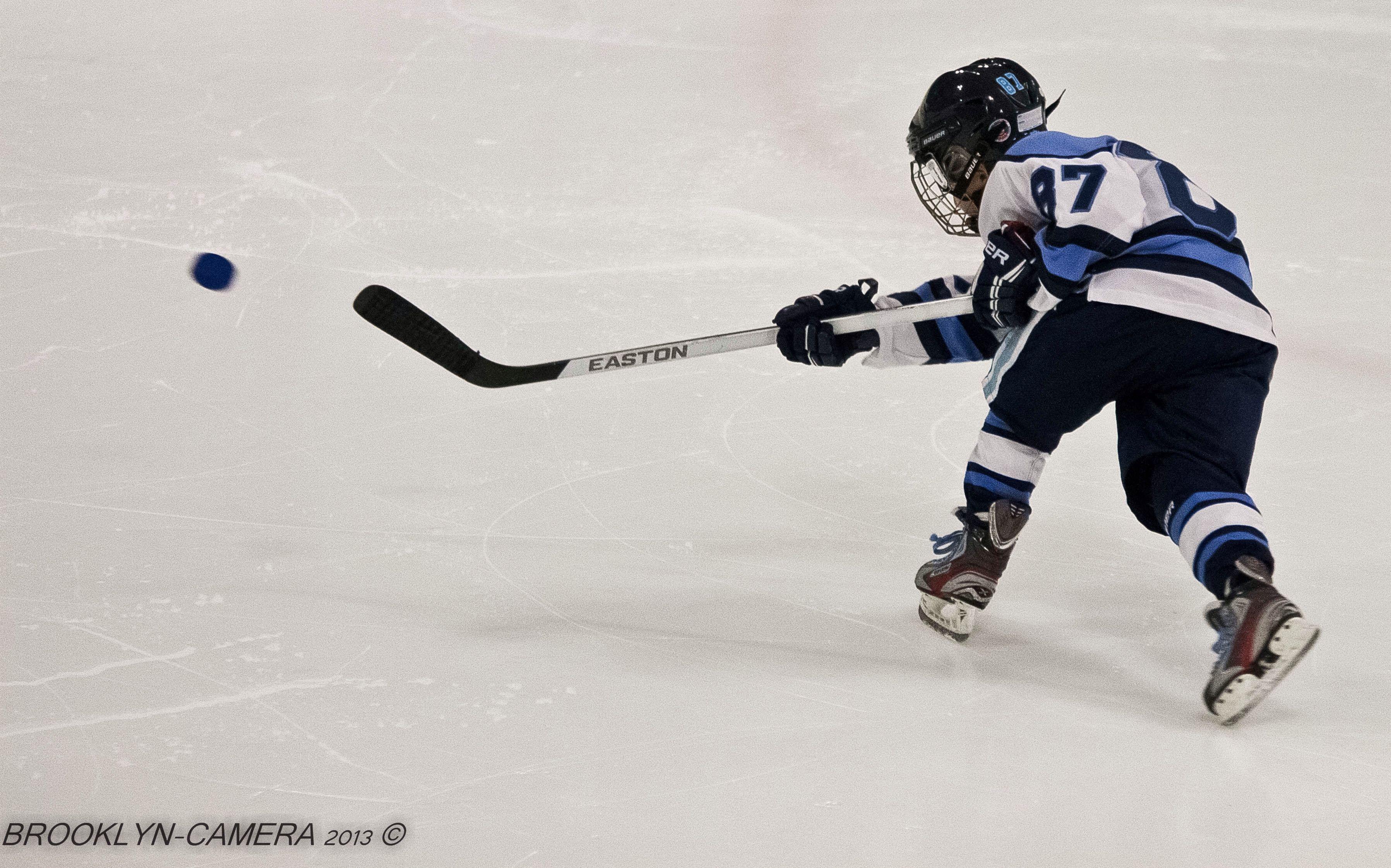 Pal hockey