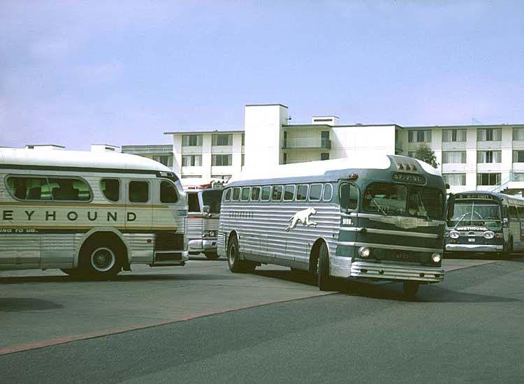 Vintage Bus Greyhound San Francisco Buses Menu Trains Trolleys