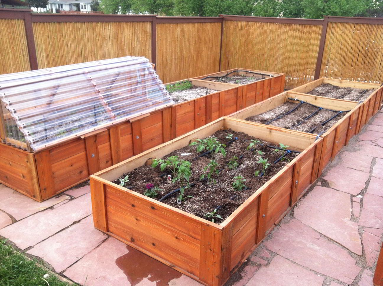 Raised cedar box garden with attached cold frame drip irrigation