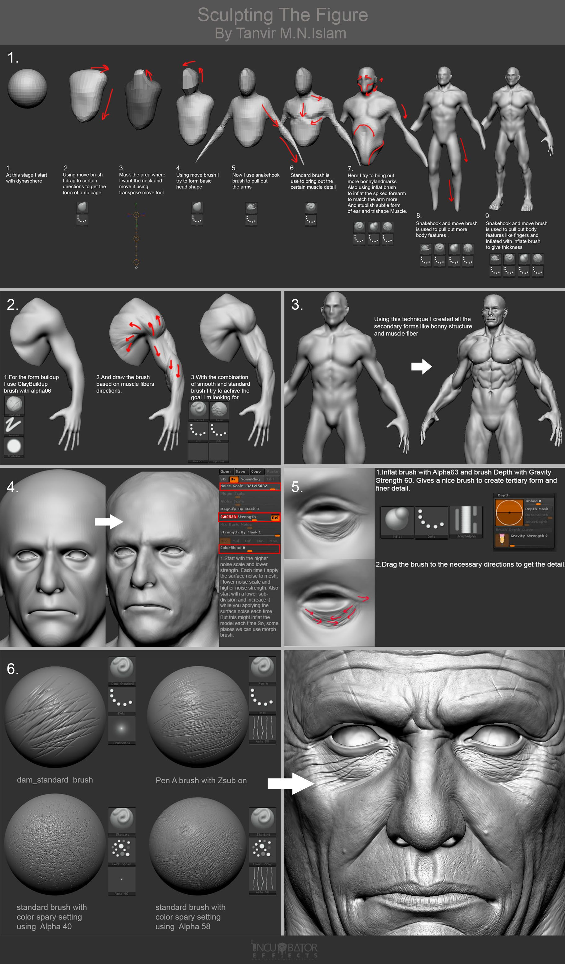 Khlotharius the Warrior | anatomical sculpture reference | Pinterest ...