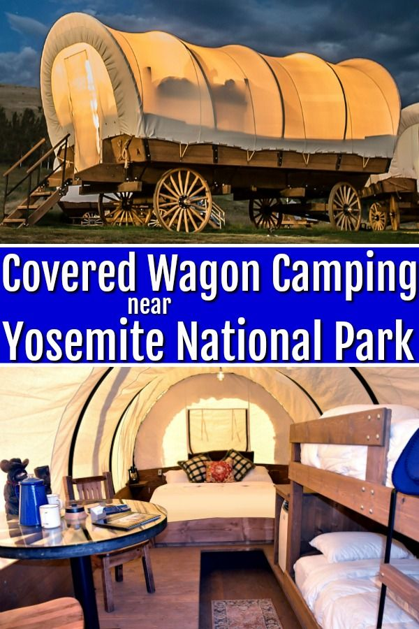 Covered Wagons for Family Lodging Near Yosemite Na