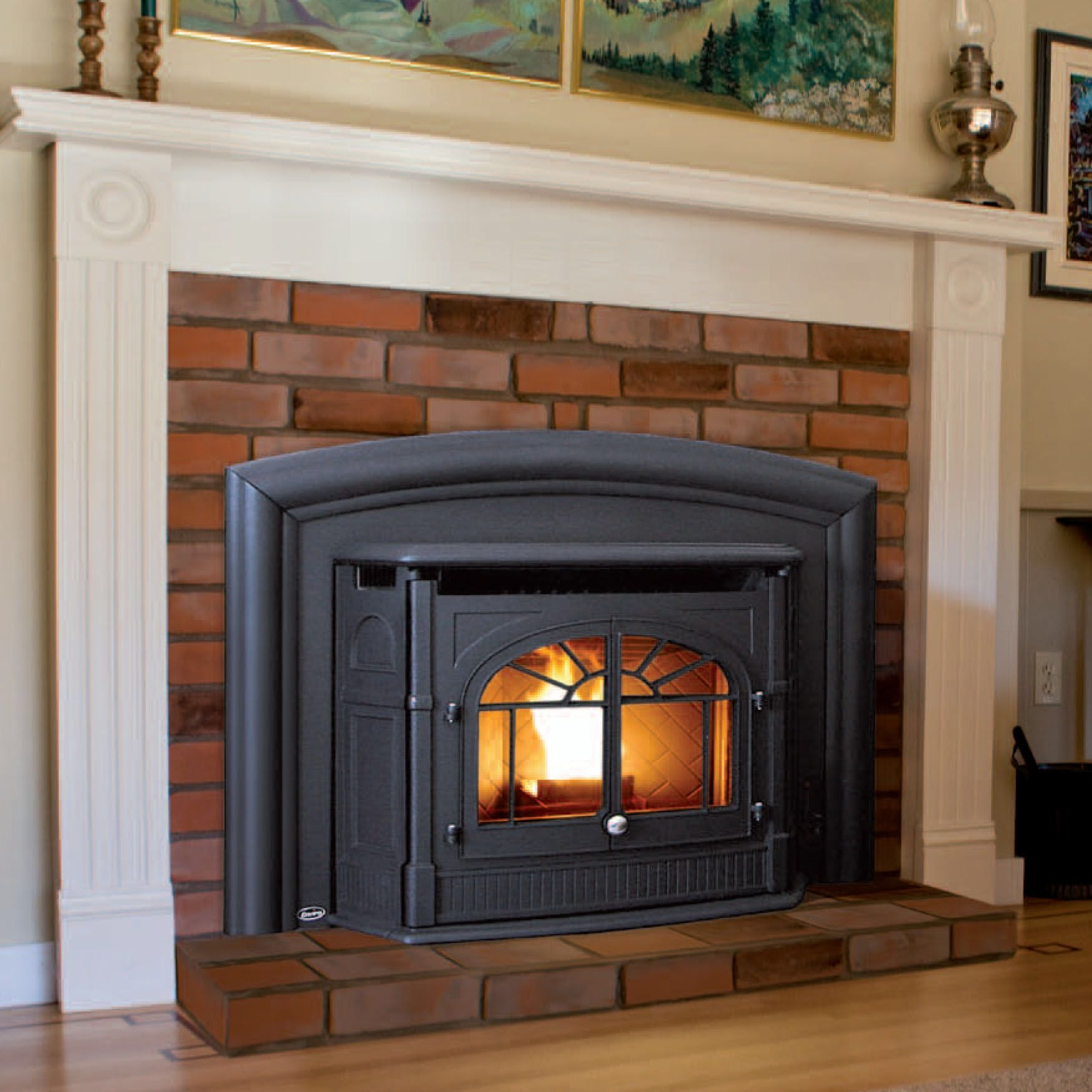 Image From Http Emerydesigns Net Pine Lake Stoves Manufacturers Enviro Pellet 20inserts Empress Jpg Pellet Stove Inserts Fireplace Inserts Pellet Stove
