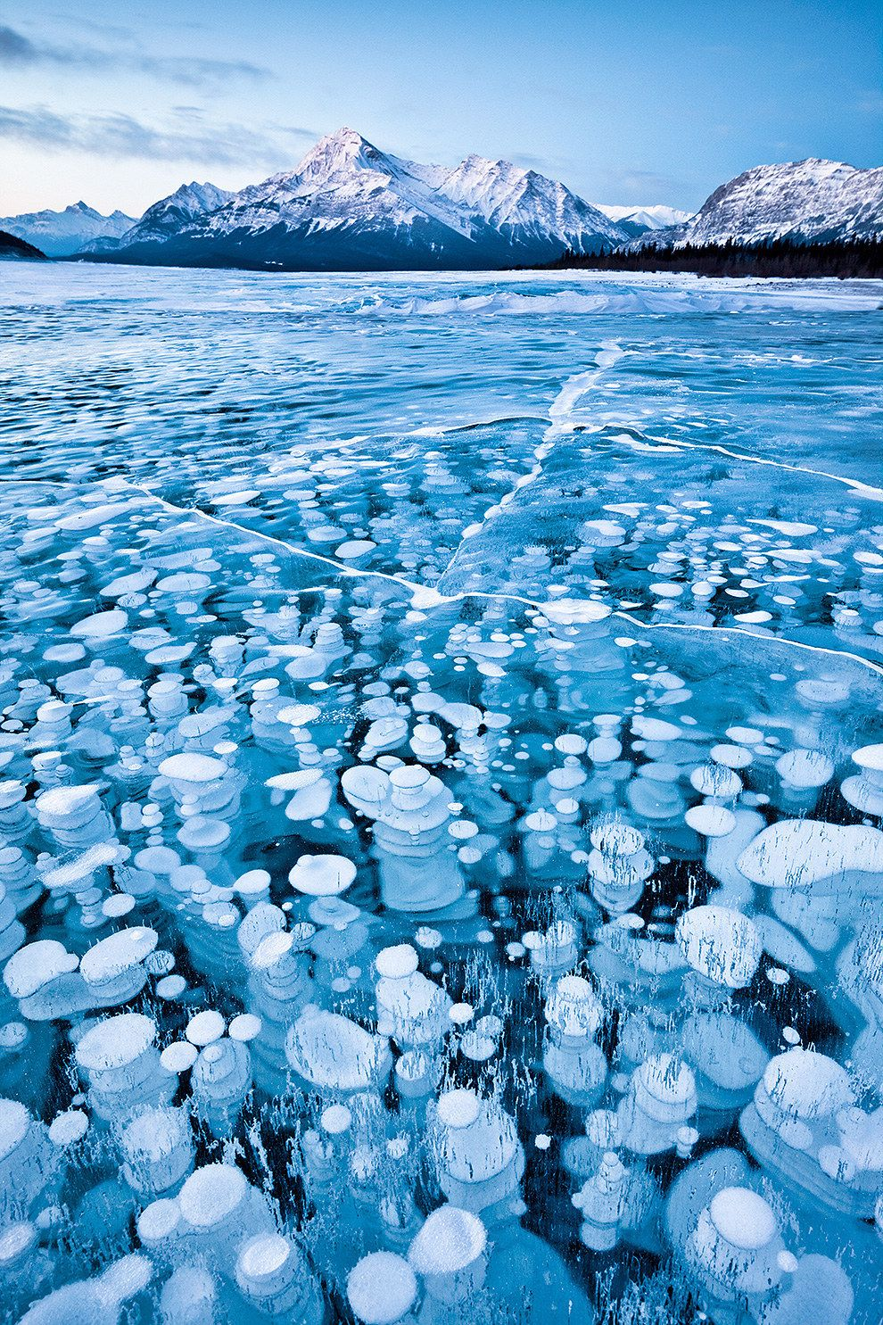 This unique lake in Alberta has nice bubbles near the surface, full of frozen methane gas.