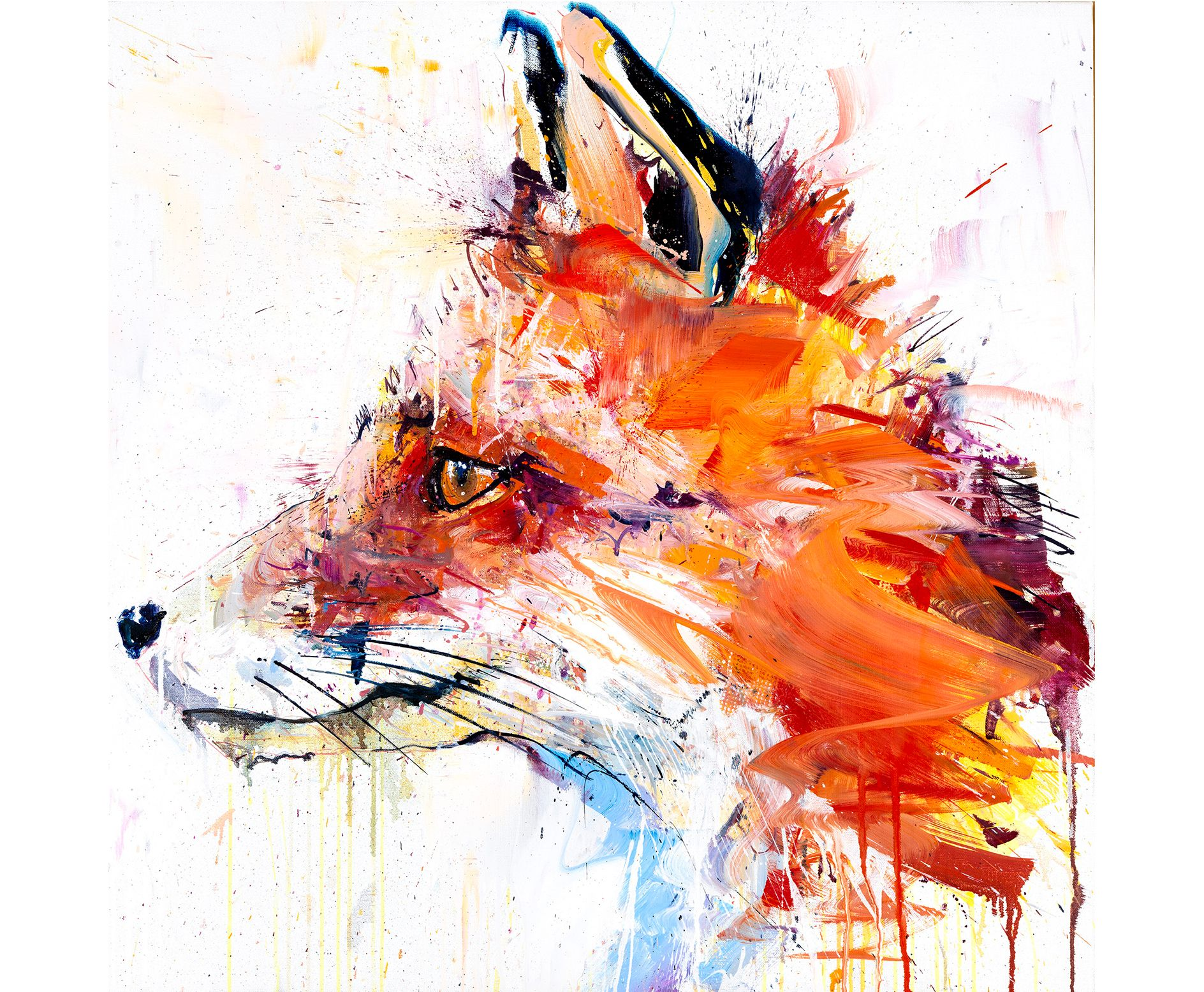 39 fox 39 the limited edition artwork by artist dave white for Art galleries that buy art