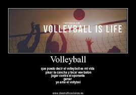 Resultado De Imagen Para Voleibol Frases Voley Voleibol Frases