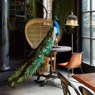 Interior Designers - Thijs Murre - Residence