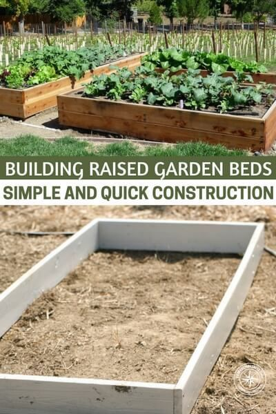 Building Raised Garden Beds U2013 Simple And Quick Construction | Building  Raised Garden Beds, Gardens And Modern Homesteading