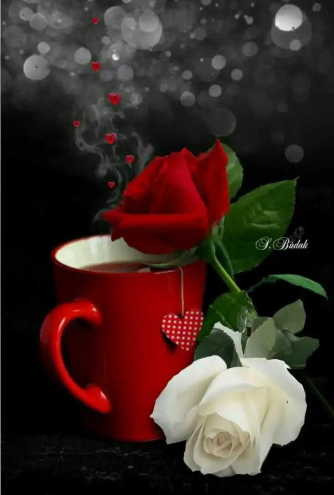 Kaffee guten romantisch morgen Romantisch Süß