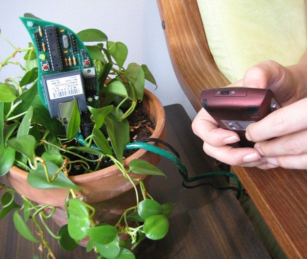 10 Futuristic and High Tech Gardening Tools for the 21st Century
