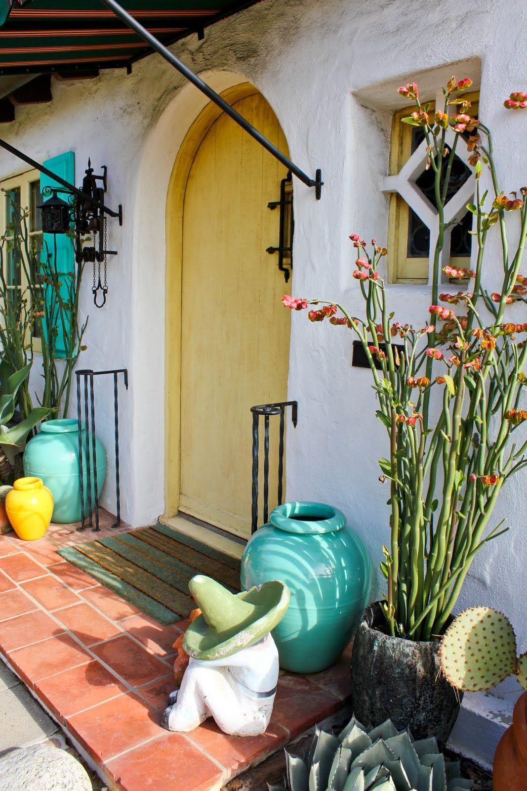 Pedilanthus bracteatus | Mexican garden, Mexican home ... on Mexican Backyard Decor  id=60734