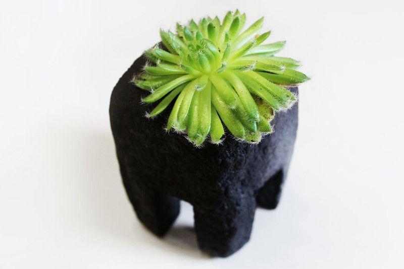 deko objekte raku keramik objekt sukkulenten beh lter ein designerst ck von zeit. Black Bedroom Furniture Sets. Home Design Ideas