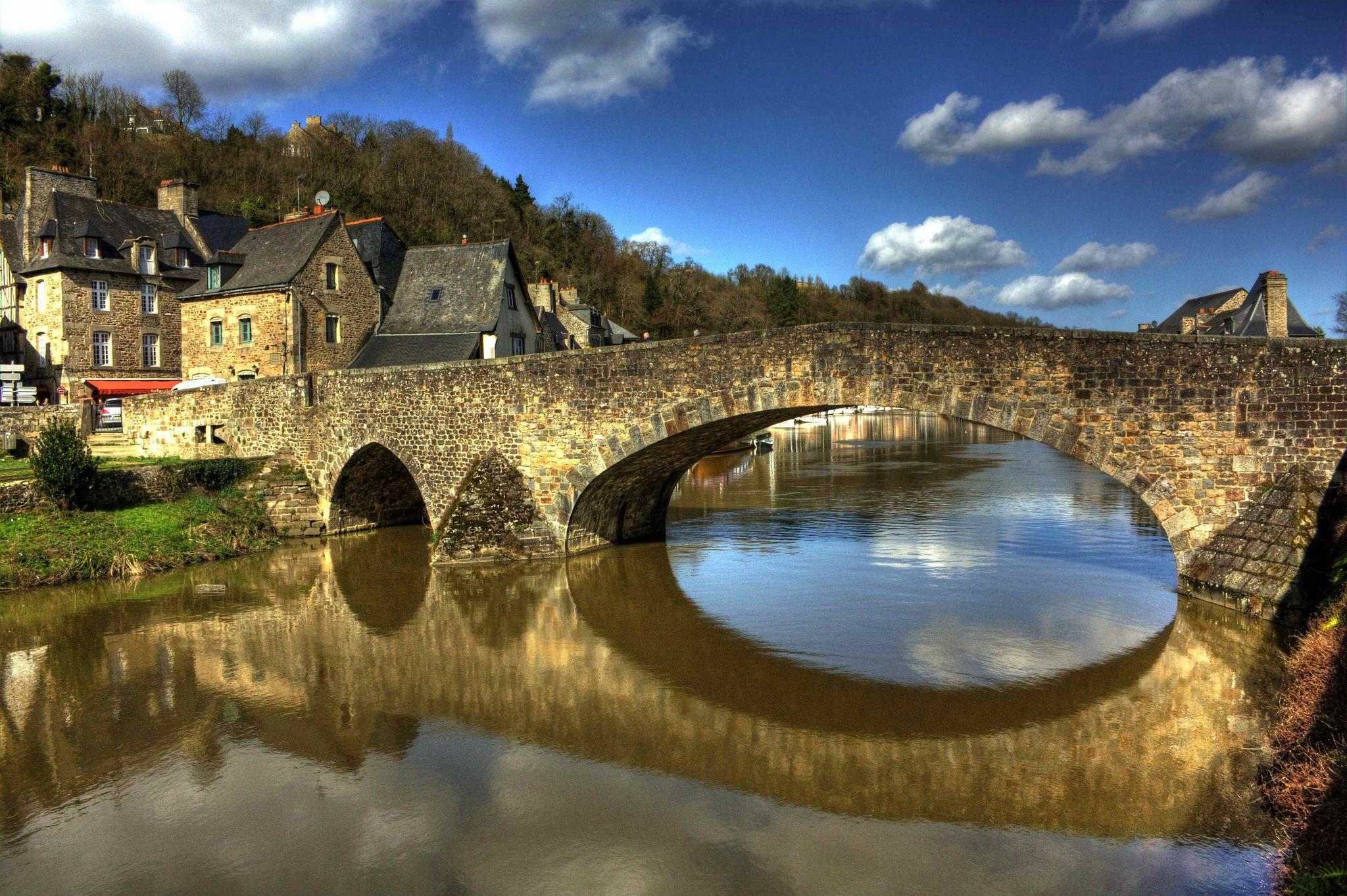 Basset fauve de Bretagne - YouTube