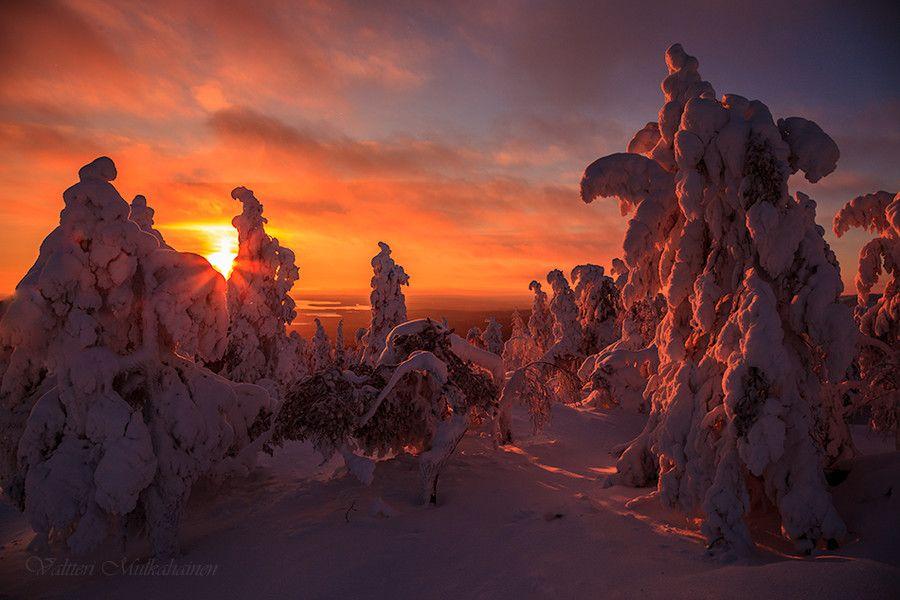 Photo Finnish winter ... by Valtteri Mulkahainen on 500px