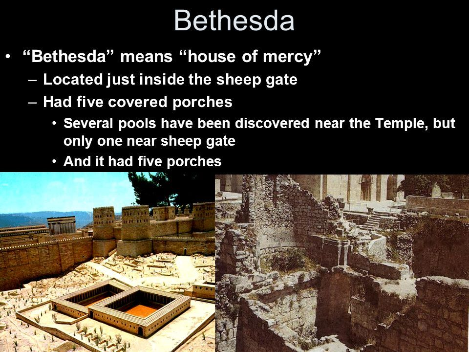The Pool Called Bethesda Bethesda Pool Miraculous Healing