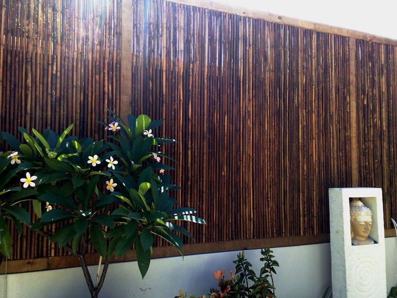 Pin By Adam Hicks On Decking Metal Pergola Diy Bamboo Fence Bamboo Screening