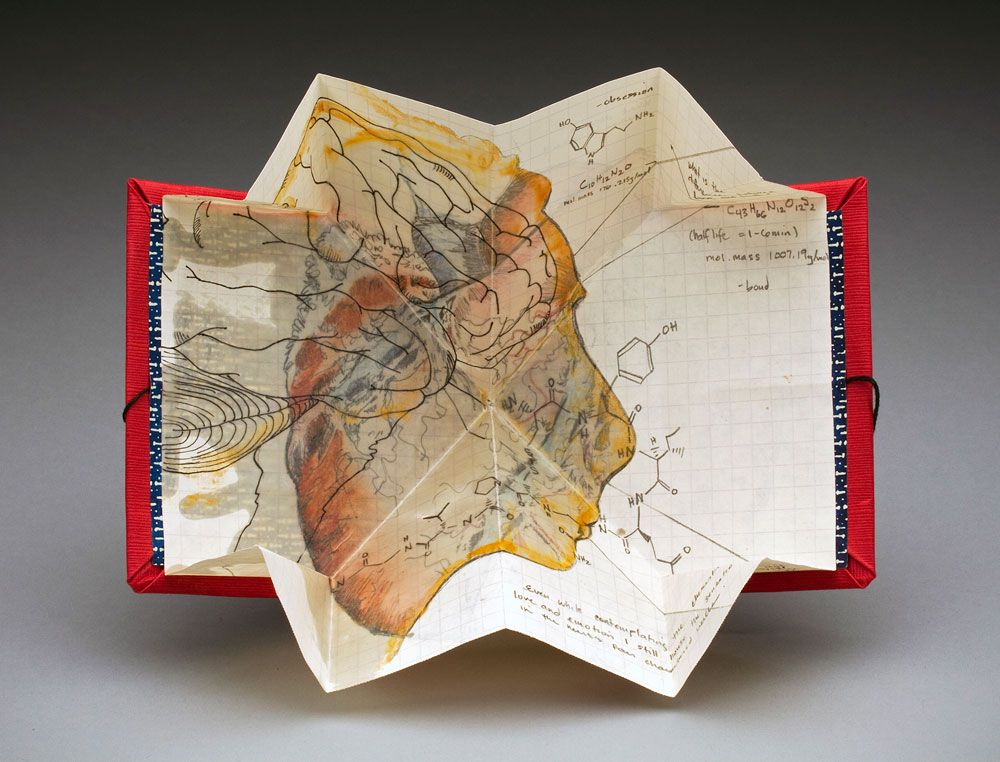 Turkish Map and Other Folding Examples
