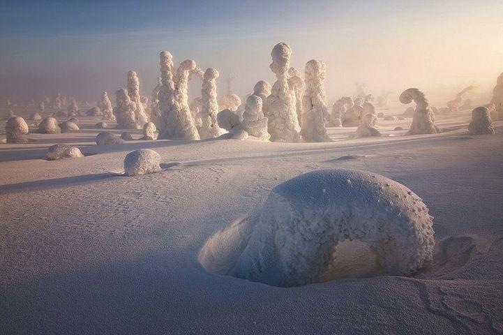 """Centinelas del artico - Finlandia Estos """"Bultos"""" son en realidad arboles que se han congelado por las bajas temperaturas del lugar en invierno."""