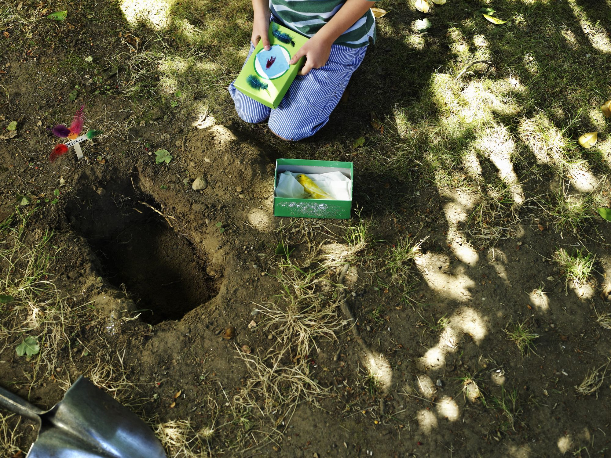 How to Bury a Pet in the Yard | Cuteness.com | Pets ...
