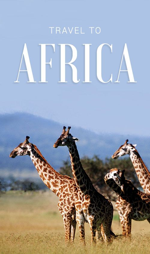 We do Africa, too! See safari, city, and beach travel packages from