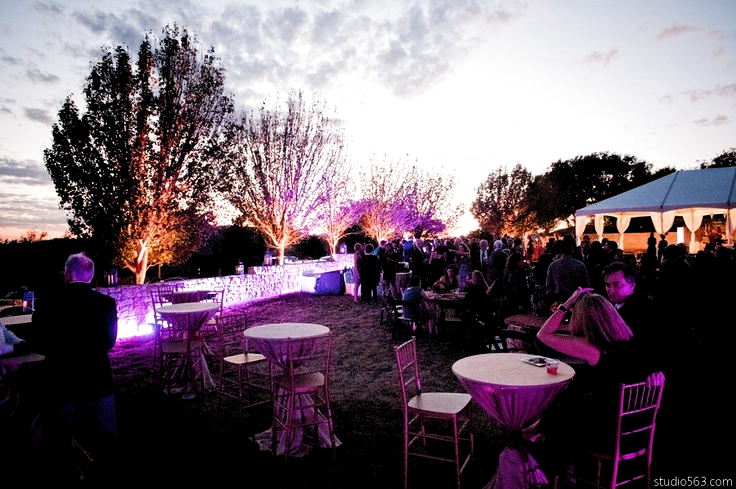 Phenomenal look at this #outdoor #uplighting #party! #diy #rentmywedding #events #sweet16 #quinceanera #barmitzvah #batmitzvah #prom #homecoming #graduation #babyshower #corpevent #sorority #fraternity #gogreek #TSM #TFM #addachaptertoyourlife #panhelleniclove #panhellenic #cpc #formal #bride #wedding #planner #event #planning #celebration #lighting by #studio563