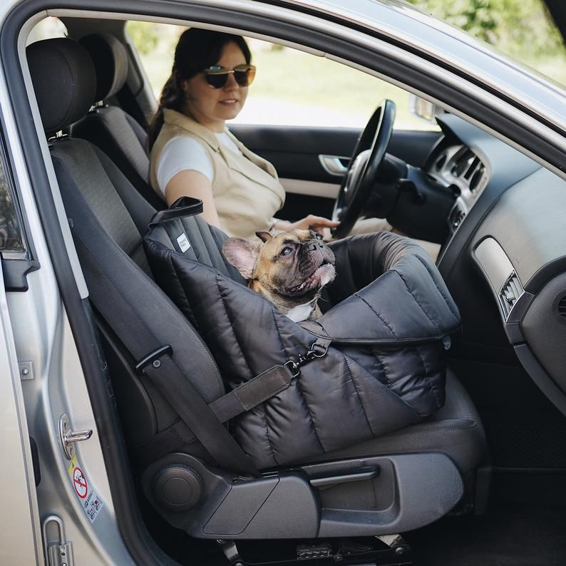 Hundefahrersitz Tiersitz Autositz Fur Hunde Reisesitz Fur Kleine