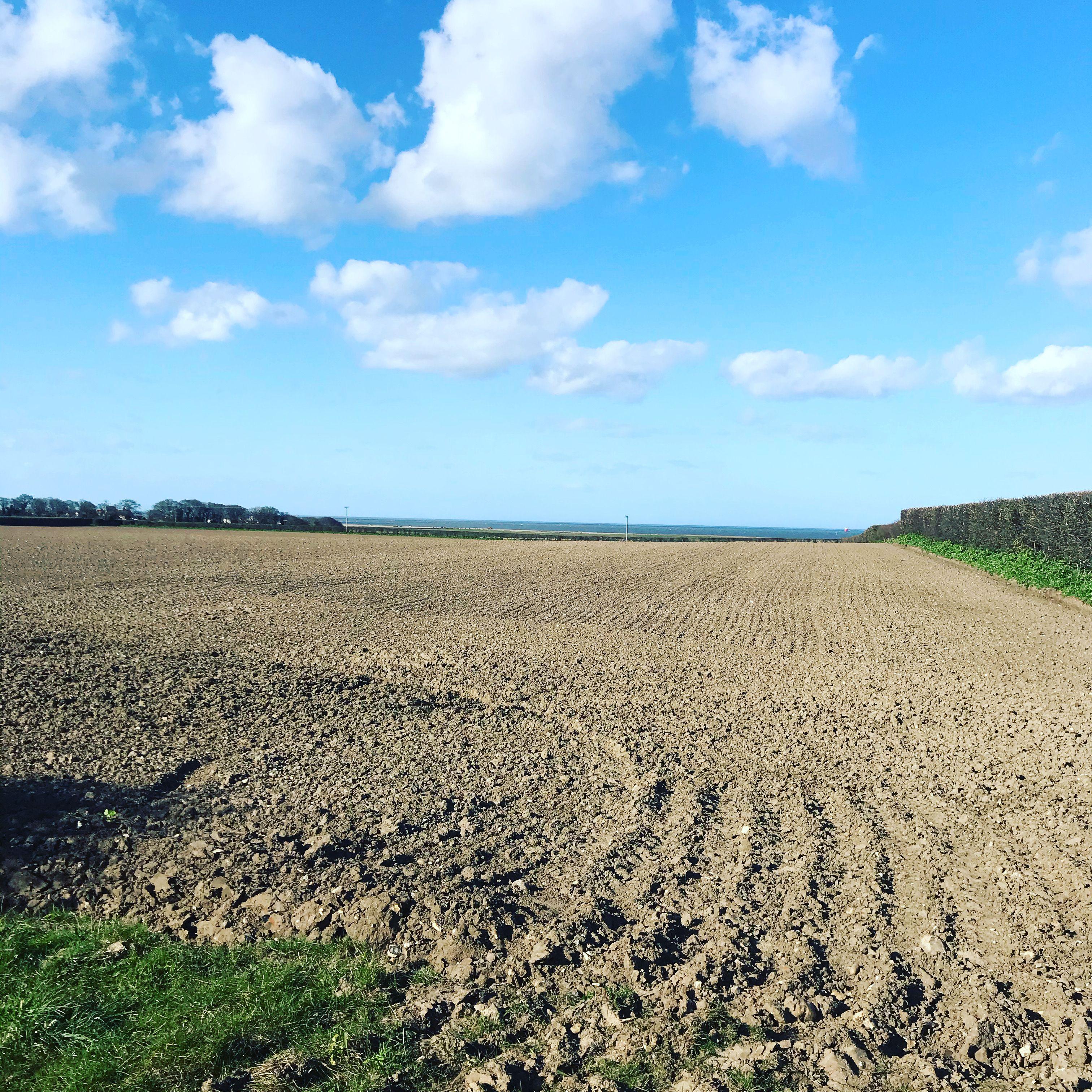 Barn drift wild in 2020 | Norfolk coast, Glamping site ...