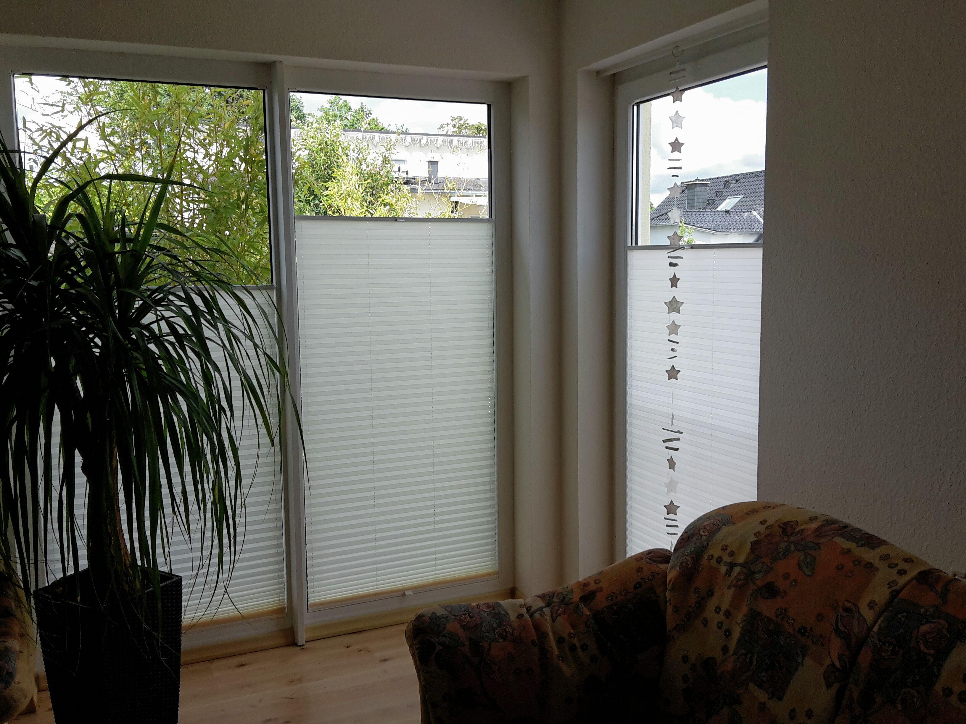 Plissee Wohnzimmer ~ Sichtschutz auch an großen fenstern mit plissees nach maß